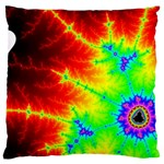 Misc Fractals Large Cushion Case (Two Sides) Back