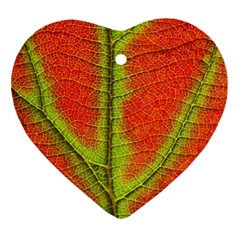 Nature Leaves Ornament (heart)