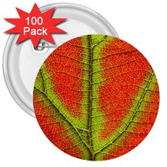 Nature Leaves 3  Buttons (100 Pack)  by BangZart