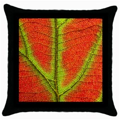 Nature Leaves Throw Pillow Case (black) by BangZart