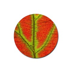 Nature Leaves Rubber Coaster (round)  by BangZart