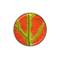Nature Leaves Hat Clip Ball Marker by BangZart