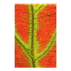Nature Leaves Shower Curtain 48  X 72  (small)  by BangZart