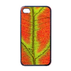 Nature Leaves Apple Iphone 4 Case (black) by BangZart