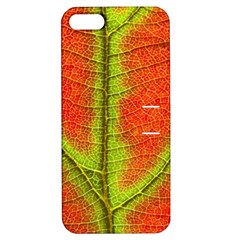 Nature Leaves Apple Iphone 5 Hardshell Case With Stand