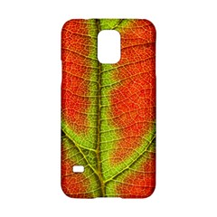 Nature Leaves Samsung Galaxy S5 Hardshell Case  by BangZart