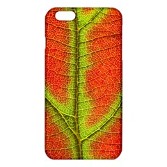 Nature Leaves Iphone 6 Plus/6s Plus Tpu Case by BangZart