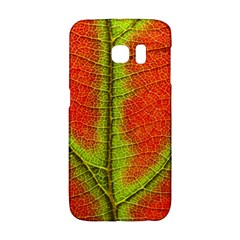 Nature Leaves Galaxy S6 Edge by BangZart