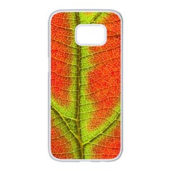 Nature Leaves Samsung Galaxy S7 Edge White Seamless Case