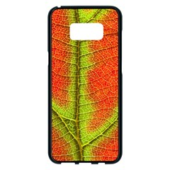 Nature Leaves Samsung Galaxy S8 Plus Black Seamless Case