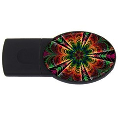 Kaleidoscope Patterns Colors Usb Flash Drive Oval (4 Gb) by BangZart