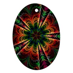 Kaleidoscope Patterns Colors Oval Ornament (two Sides) by BangZart
