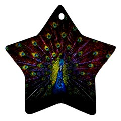 Beautiful Peacock Feather Ornament (star) by BangZart