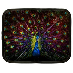 Beautiful Peacock Feather Netbook Case (large) by BangZart