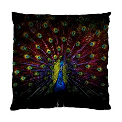 Beautiful Peacock Feather Standard Cushion Case (two Sides)