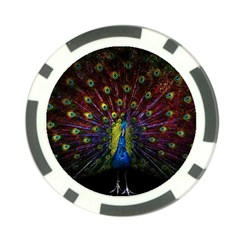 Beautiful Peacock Feather Poker Chip Card Guard (10 Pack) by BangZart