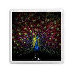 Beautiful Peacock Feather Memory Card Reader (square)  by BangZart