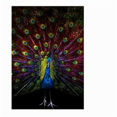 Beautiful Peacock Feather Large Garden Flag (two Sides) by BangZart