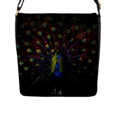 Beautiful Peacock Feather Flap Messenger Bag (l)  by BangZart