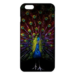 Beautiful Peacock Feather Iphone 6 Plus/6s Plus Tpu Case by BangZart