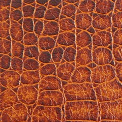 Crocodile Skin Texture Magic Photo Cubes by BangZart