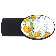 Fruits Water Vegetables Food Usb Flash Drive Oval (2 Gb)
