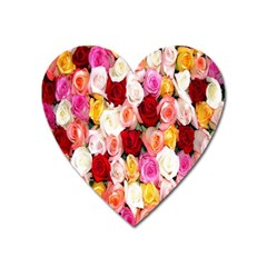 Rose Color Beautiful Flowers Heart Magnet by BangZart