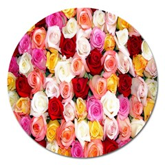 Rose Color Beautiful Flowers Magnet 5  (round) by BangZart