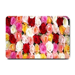 Rose Color Beautiful Flowers Small Doormat  by BangZart
