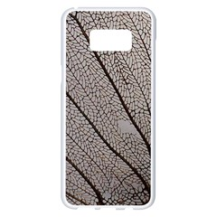 Sea Fan Coral Intricate Patterns Samsung Galaxy S8 Plus White Seamless Case