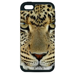 Leopard Face Apple Iphone 5 Hardshell Case (pc+silicone)