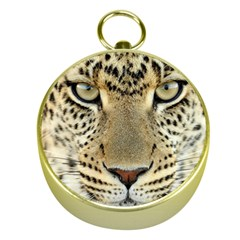 Leopard Face Gold Compasses by BangZart