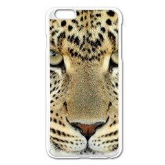 Leopard Face Apple Iphone 6 Plus/6s Plus Enamel White Case by BangZart