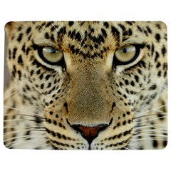 Leopard Face Jigsaw Puzzle Photo Stand (rectangular) by BangZart
