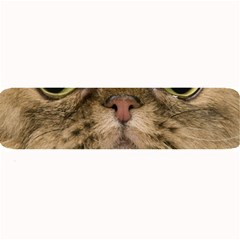Cute Persian Catface In Closeup Large Bar Mats by BangZart