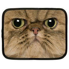 Cute Persian Catface In Closeup Netbook Case (xxl)  by BangZart