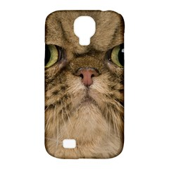 Cute Persian Catface In Closeup Samsung Galaxy S4 Classic Hardshell Case (pc+silicone) by BangZart