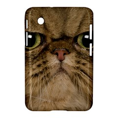 Cute Persian Catface In Closeup Samsung Galaxy Tab 2 (7 ) P3100 Hardshell Case