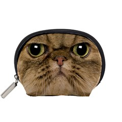 Cute Persian Catface In Closeup Accessory Pouches (small)