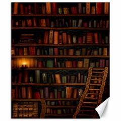 Books Library Canvas 20  X 24