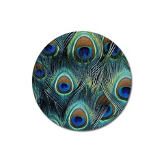 Feathers Art Peacock Sheets Patterns Magnet 3  (round) by BangZart