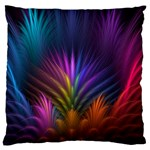 Colored Rays Symmetry Feather Art Large Flano Cushion Case (One Side) Front