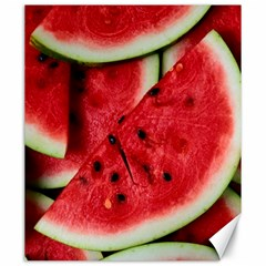 Fresh Watermelon Slices Texture Canvas 20  X 24   by BangZart