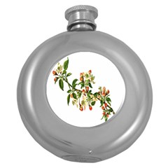 Apple Branch Deciduous Fruit Round Hip Flask (5 Oz) by Nexatart
