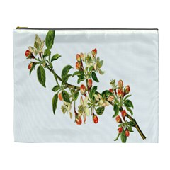 Apple Branch Deciduous Fruit Cosmetic Bag (xl) by Nexatart