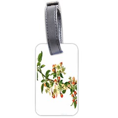 Apple Branch Deciduous Fruit Luggage Tags (one Side)