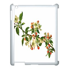 Apple Branch Deciduous Fruit Apple Ipad 3/4 Case (white) by Nexatart