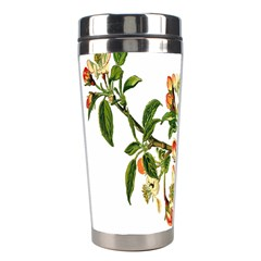 Apple Branch Deciduous Fruit Stainless Steel Travel Tumblers