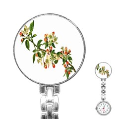 Apple Branch Deciduous Fruit Stainless Steel Nurses Watch by Nexatart