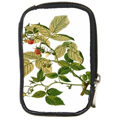 Berries Berry Food Fruit Herbal Compact Camera Cases by Nexatart